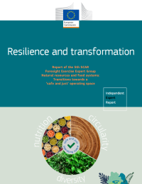 Resilience and transformation cover report