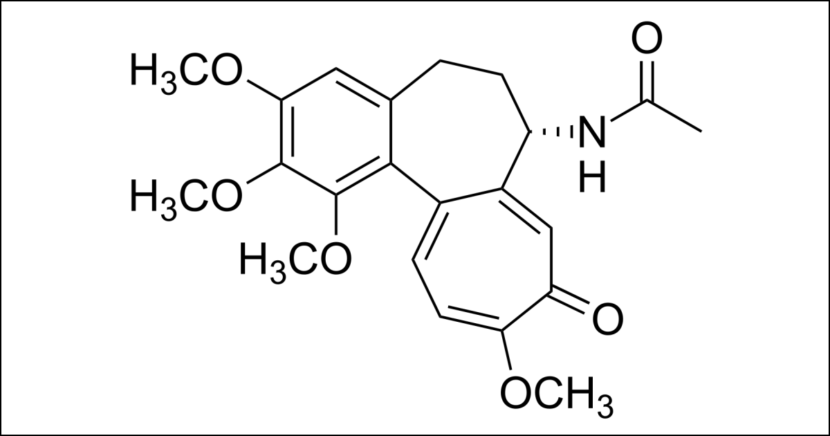 Chemical structure of colchicine. (Image: Calvero/Wikimedia Commons)