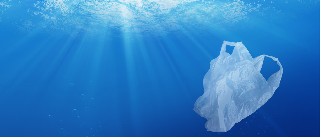 Can Plastic Go Green? | Science|Business