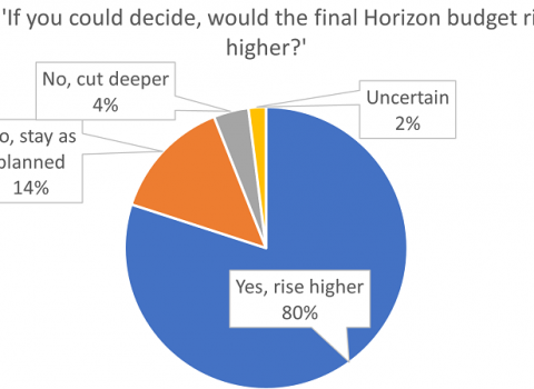 Chart Horizon Survey